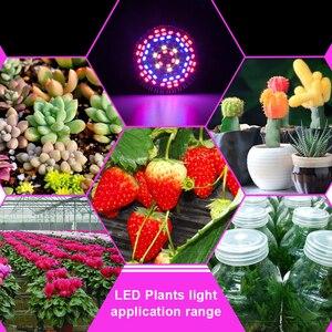Image 5 - LED Grow Light Full Spectrum 10W 30W 50W 80W E27 LED Phyto Lamp Fitolampy Bulb 28 40 78 120LEDs Plant Lamp For Flowers Seedings