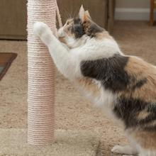 Sisal-Rope Scratching-Post for Pet-Cat Claw-Care Toy Repair-Making Desk-Legs Sharpen