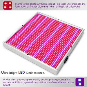 Image 3 - (2/Pack) الطيف الكامل 2009LED تنمو ضوء 200 واط داخلي النبات مصباح ل مشتل زراعة مائيّة خيمة زهرة الخضار عشب نمو صندوق