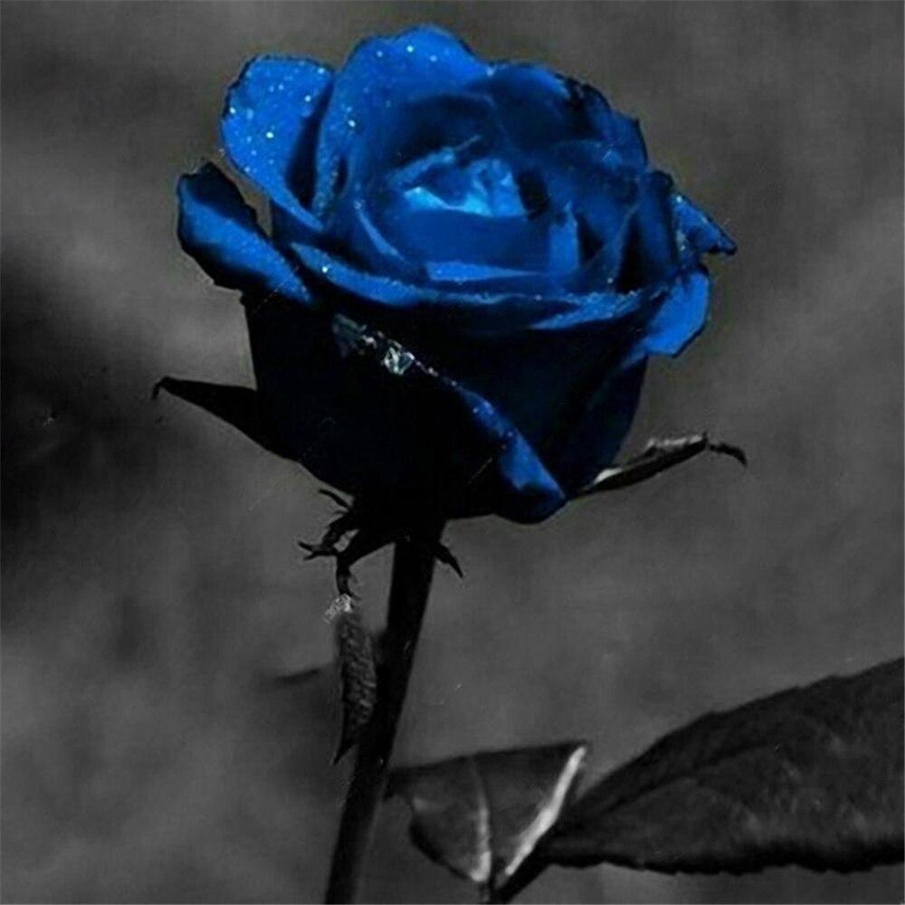 60Pcs Beautiful Flower Plant Bath Salts France Blue Rose Flowers Essence MLXH-17-A