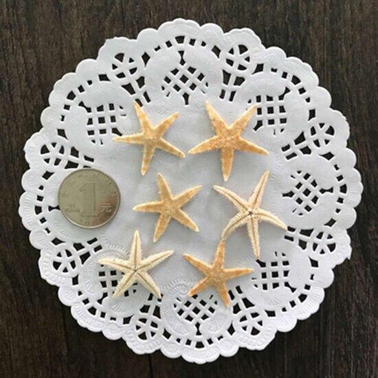 Фото 20 шт ракушка из натуральной морской звезды пляжные поделки цена