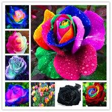 200 шт Редкие голландские радужные розы домашний сад бонсай редкие Цветочные растения радужные розы Флорес, розы саженцы