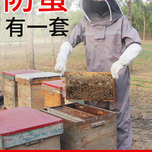 Beekeeping Protective Clothes Anti-Bee Clothing Special One-Piece Anti-Stinging Breathable Thickening Protective Caps Gloves