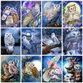 Evershine Алмазная вышивка совы 5D DIY Алмазная мозаика животные вышивка крестиком картина стразы украшения для дома