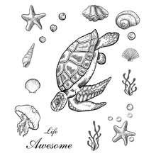 Прозрачные штампы zhuoang в виде морской черепахи звезды ракушки
