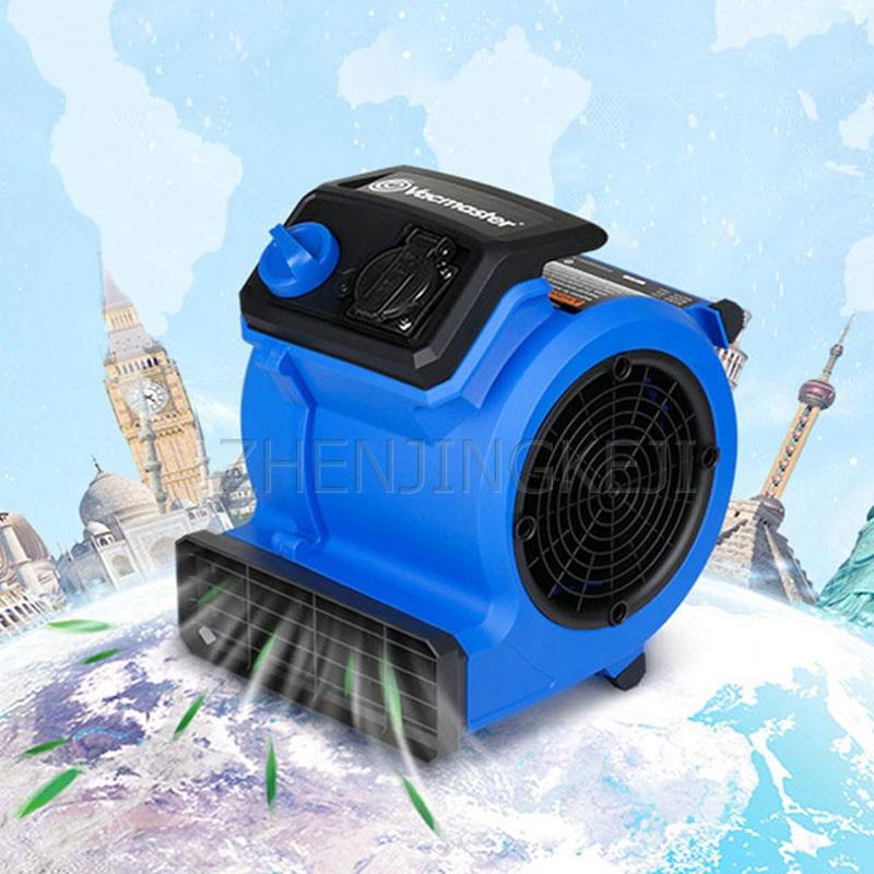 220V Portable Floor Hair Dryer Low Power Large Air Volume Small Commercial Household Floor Carpet Silent Multi-Angle Blow Blower
