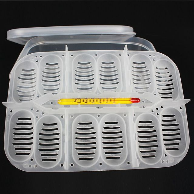 12 Holes Reptile Egg Incubation Tray With Thermometer Incubating Gecko Lizard Snake Eggs Incubation Tool 4