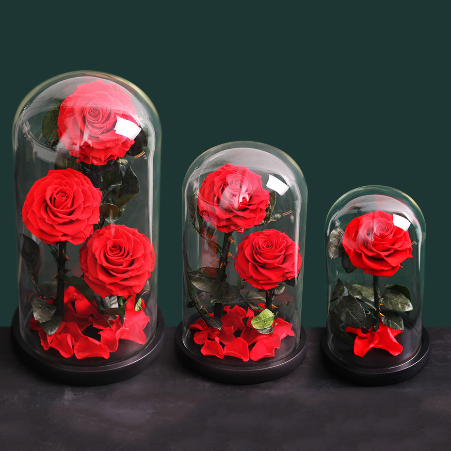 Birthday Gift For Her Preserved Rose Rose In Glass Dome Beauty And The Beast Home Garden Floral Decor Ayianapatriathlon Com