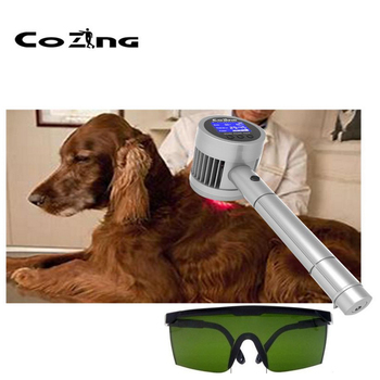Laser Therapeutic Device From China Chiropractor Cold Laser Medical Equipment For Dog