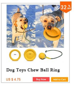 Transportador de cães