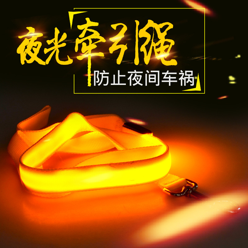 Pet Shining Hand Holding Rope Flash Night Anti-Car Accident Double-Sided No Map Dog Traction Rope Pet Supplies