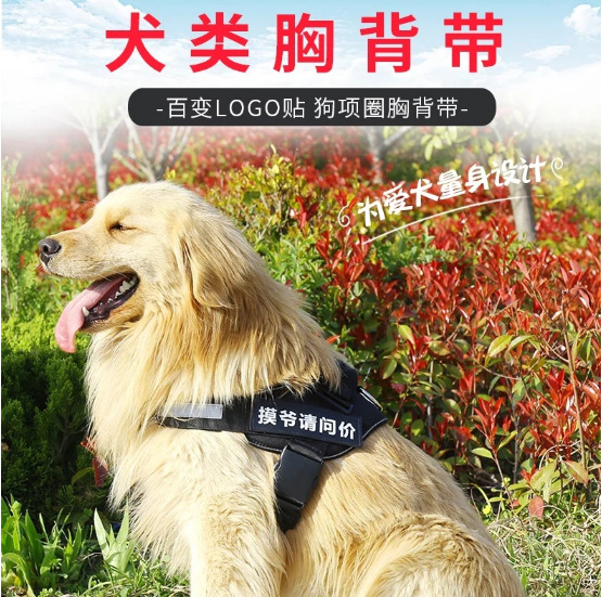 Dog Simple Teddy Lanyard Back-Reflective Neck Ring Suppository Dog Small Traction Lanyard Sub-Unscalable Chinlon For Dogs
