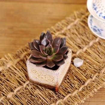 New 5pcs Set Mini Glazed Ceramic Flower Pots Garden Miniature Flower Bonsai Pots Succulent Planter Home Desk Office Decor Orname