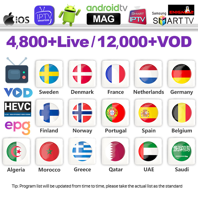 IPTV France 1 Year IPTV Subscription French IPTV Arabic Belgium Dutch Portugal Spain Sweden Germany For Android M3u IP TV