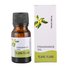 10ml Essential Oil 100% Natural Aromatherapy Fragrance