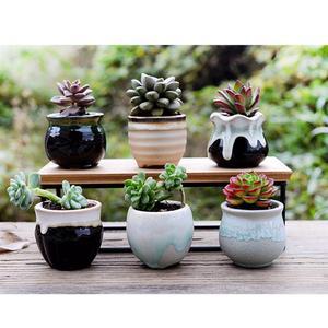 Image 5 - 6pcs Creative Ceramic Succulent Plant Flower Pot Variable Flow Glaze For Home Room Office Seedsplants Plant Pot Without Plant