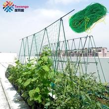 Tewango сверхмощная нейлоновая сетка для огурец утренняя Глория Петуния цветы Veggie Trellis сетка растение скалолазание лоза