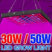Led crescer luz 20w 30 40 50 lâmpadas led espectro completo planta lâmpada fitocampy para flores cultivo de mudas AC85-265V