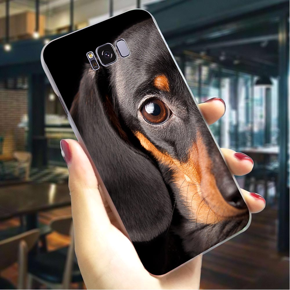Dachshund Doberman <font><b>Dog</b></font> Hard Cover for <font><b>Samsung</b></font> <font><b>Galaxy</b></font> A70 <font><b>A3</b></font> 2015 A5 2016 A6 <font><b>2017</b></font> A7 2018 A8 Plus A9 A10 A20 A30 A40 A50 image