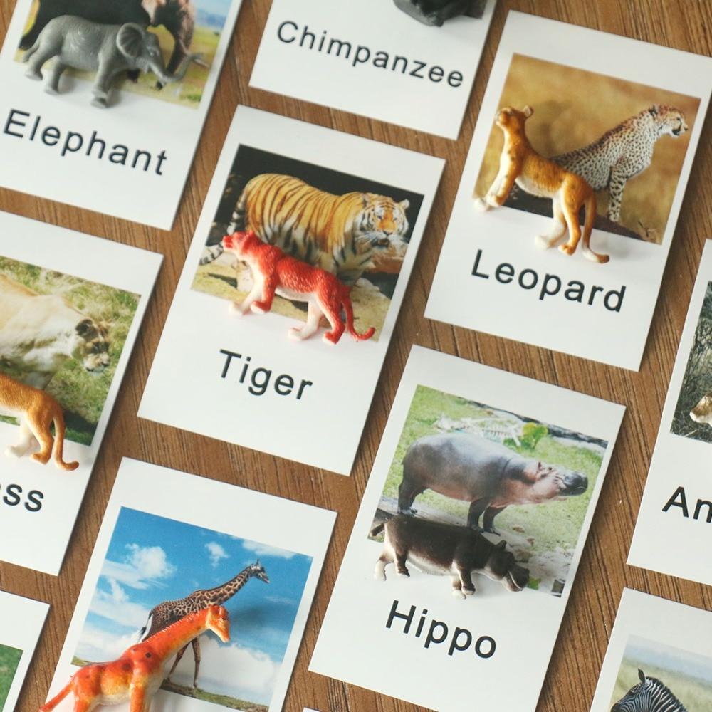 Montessori Materials Toys Safari Animal Match Cards Montessori Educational Language Learning Kids Toys Juguetes Montessori A466F