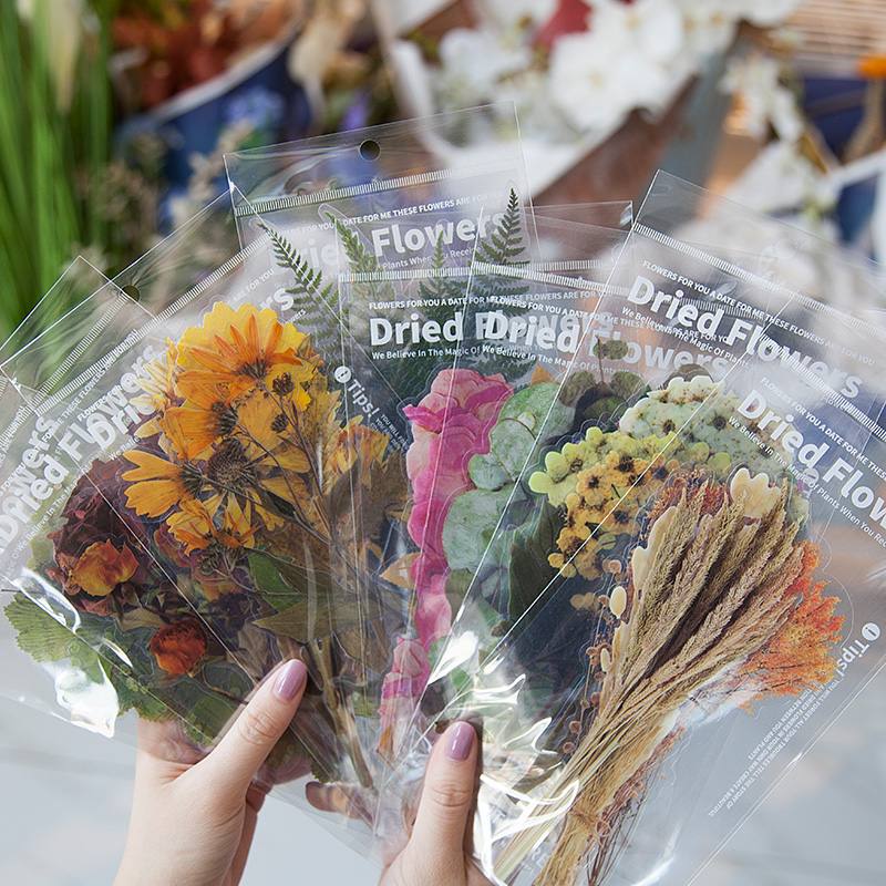 6 Pcs/lot PET Dried Flowers Decor Paper Sticker Decoration Stickers DIY Scrapbooking Diary Album Sticker Post Kawaii Stationery