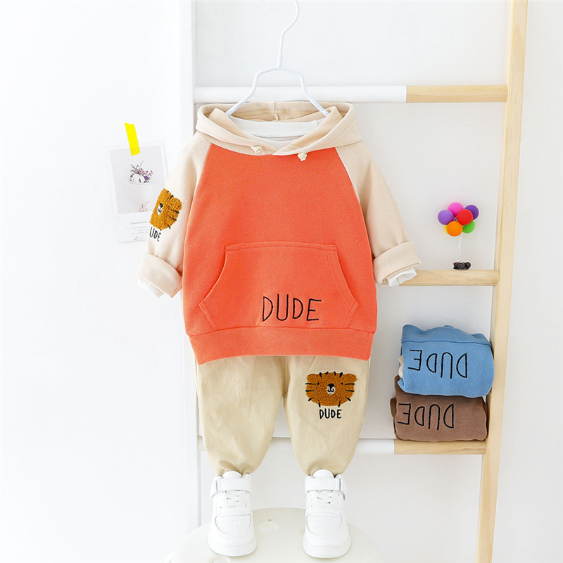 HYLKIDHUOSE 2020 Spring Girls Boys Clothing Sets Toddler Infant Clothes Hooded Cartoon T Shirt Pants Outdoor Baby Clothing Sets