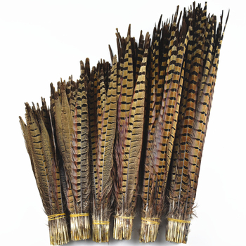 10Pcs/Lot Natural Ringneck Pheasant Tail Feathers for Crafts 25-75CM 10-30 Wedding Decorations Pheasant Feather Plumes Plumas 10pcs lot natural ringneck pheasant tail feathers for crafts 25 75cm 10 30 wedding decorations pheasant feather plumes plumas