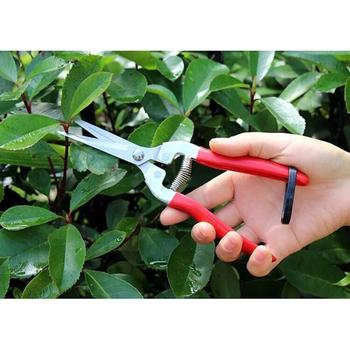 Nożyce ogrodowe ze stali nierdzewnej nożyce ogrodowe trawa krajalnica do owoców nożyce ogrodowe gałęzi sekatory E2S tanie i dobre opinie Aleekit Other Kowadło Antypoślizgowy uchwyt Garden Shears Nie powlekany