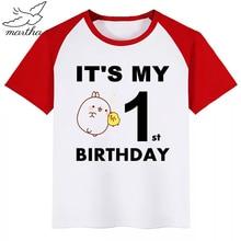 Birthday Number Boys T-Shirt Molang and Piupiu Cute Rabbit Print Kids Clothes Boy Tops Children Clothing Party Tee Shirts colorful dot rabbit print tee