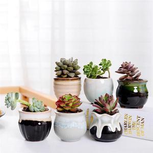 Image 4 - 6pcs Creative Ceramic Succulent Plant Flower Pot Variable Flow Glaze For Home Room Office Seedsplants Plant Pot Without Plant