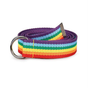 New Trendy Rainbow Colors Exquisite Waist Belt for Women Lady Pretty Canvas Thin Skinny Waist Belt Dress Accessory LGBT
