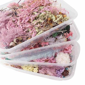 Image 4 - 1 Box Colorful Real Dried Flower Plant For Aromatherapy Candle Epoxy Resin Pendant Necklace Jewelry Making Craft DIY Accessories