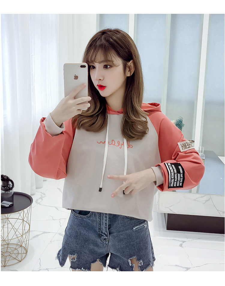 Hooded pullover girls autumn clothes Korean version of loose casual 2019 new student letter print women's sweatshirt 40