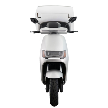 Electric motorcycle-ROBO S DELIVERY 2