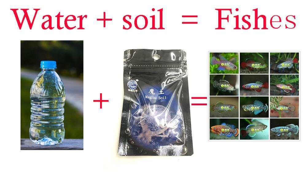 Water+Soil=Fish