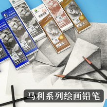 цена на 12PCS Sketch charcoal black painting 2b4b pencil art exam special HB pencil5B 6B 7B 8B 10B 12B 14B
