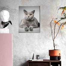 Pintura sin marco de gato por números, imágenes en lienzo de animales por números, decoración del hogar, estilo minimalista