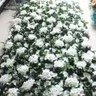 SPR 4ft * 8ft/pcs roll up doek base bloem muur Kunstmatige rose bruiloft gelegenheid achtergrond arrangement bloemen decoraties gratis verzending
