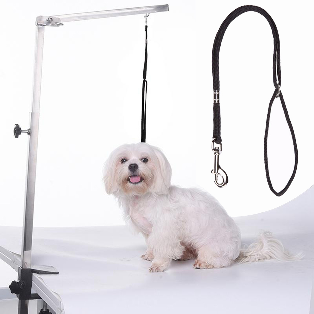 1pc Durable <font><b>Dog</b></font> Leash Nylon Pet Noose Loop Lock Clip Rope Harness <font><b>Dogs</b></font> Grooming <font><b>Table</b></font> Arm Bath Restraint Rope Dropshipping image