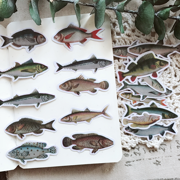20pcs Marine Fish, Fish Specimen Colorful Decoration Sticker To Diy Ablum Diary Books Bullet Journal Sticker Stationery
