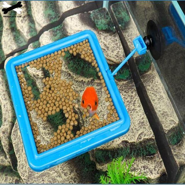 New Aquarium Feeding Ring 3