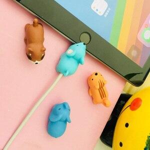 Image 3 - 만화 팬더 고양이 상어 케이블 수호자 데이터 라인 코드 보호기 아이폰에 대 한 보호 케이블 와인 더 커버 usb 충전 케이블