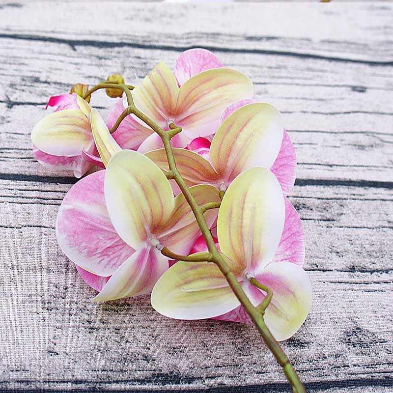1 bundel (6 koppen) plastic Vlinder orchidee vazen voor home decor bruiloft decoratieve bloemen kerstcadeaus doos kunstmatige bloem