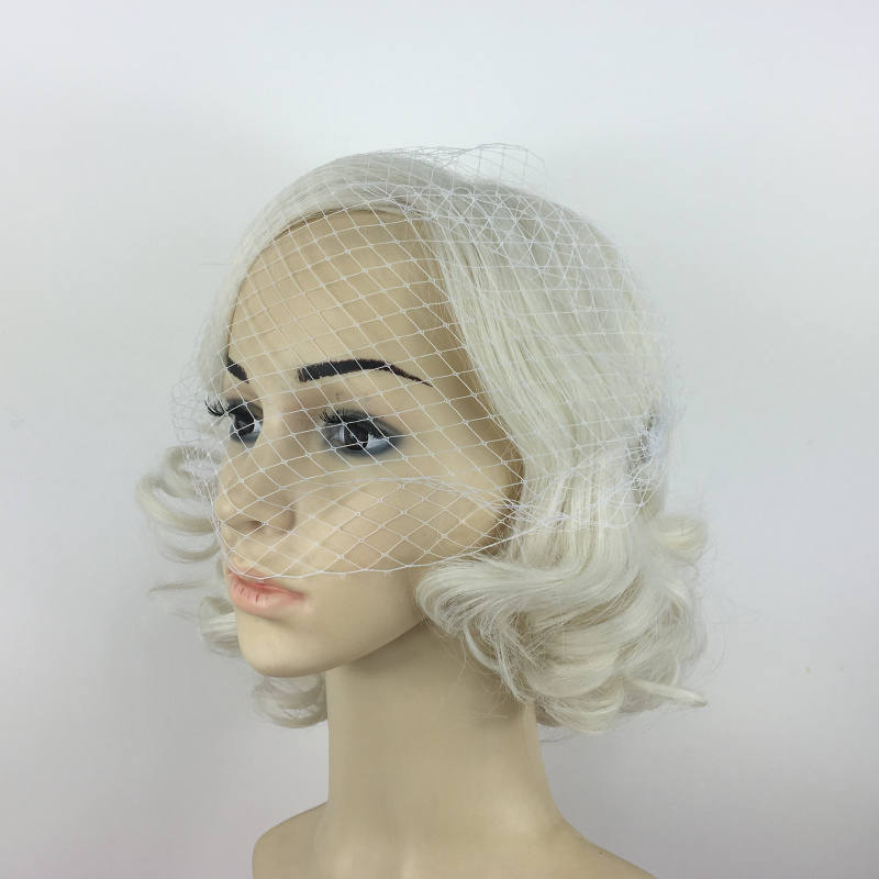 Wedding Bridal Birdcage Women Face Veil White Fascinator With Hair Comb Clips