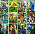 Yikexin pintura diamante papagaio animais circular completa 5d diy diamante bordado pássaro strass mosaico ponto cruz decoração da sua casa