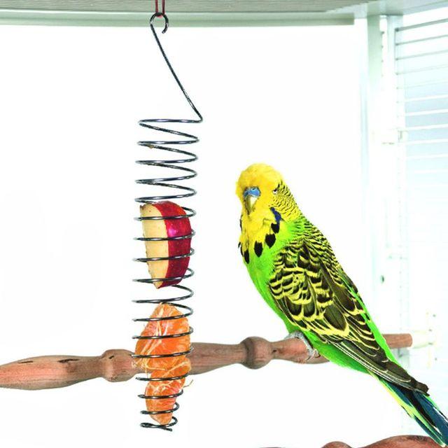 Parrot Bird Food Fruit Basket Toys Stainless Steel Feeding Device Birds Cage Feeder 4