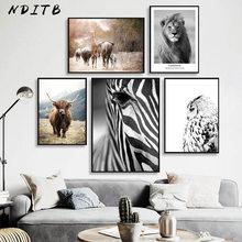 Affiche d'art mural, décoration scandinave, Animal africain, Lion, zèbre, vache, peinture sur toile imprimée, décor nordique de salon