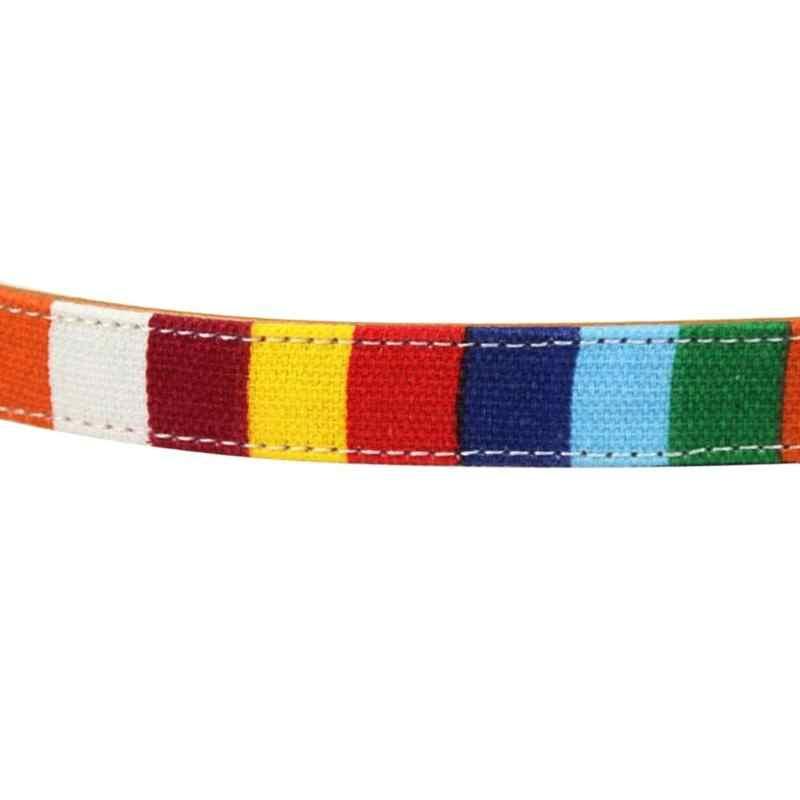Collier de chien arc-en-ciel collier réglable pour grand chien en cuir collier uni pour grand petit chien