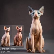 1/6 Resin Animal Model Jxk010 1/6 Canadian Hairless Sphynx cat 3 Colors Pet Animal F 12