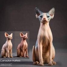 Scale 1/6 Resin Animal Model Jxk010 1/6 Canadian Hairless Sphynx cat 3 Colors Pet Animal F 12